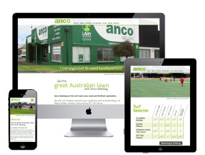 circle media Geelong Anco website design